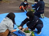 小学生と花植え