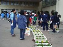 埼玉県立寄居城北高等学校 花いっぱい運動